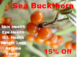 Sea buckthorn has been used for skin, eye, GI, breathing, and weight disorders